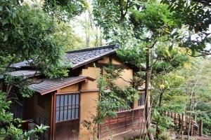 Hakone and Oedo Onsen Monogatari 131