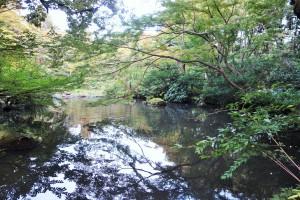 Hakone and Oedo Onsen Monogatari 152
