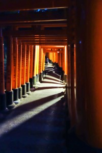 Fushimi Inari Shrine and Arashiyama 141