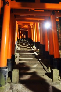 Fushimi Inari Shrine and Arashiyama 191
