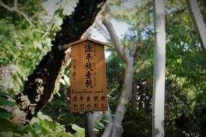 Fushimi Inari Shrine and Arashiyama 366
