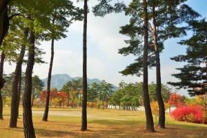 Seoul day 2 186